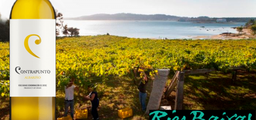 Win Six Bottles of Contrapunto Albarino from O'Briens Wines to Celebrate Rias Baixas Week