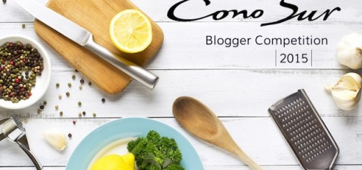 Win a trip to Chile with Cono Sur Food & Lifestyle Blogging Challenge - CLOSED