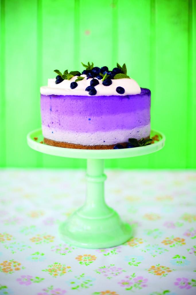 Sharon Blueberry Cheesecake_1