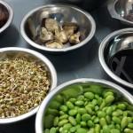 Vegan Cooks Academy