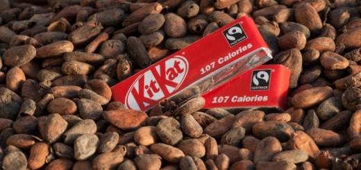 Nestle Fairtrade Cocoa