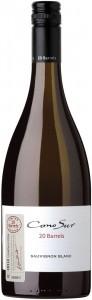 Cono Sur 20 Barrels Sauvignon Blanc