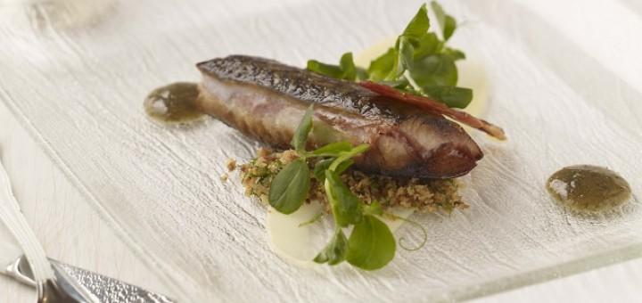 Mackerel Recipe Dax Restaurant