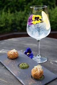 Irish Gin and Tonic Fest 2016