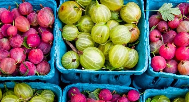 Gooseberries Summer Market Food