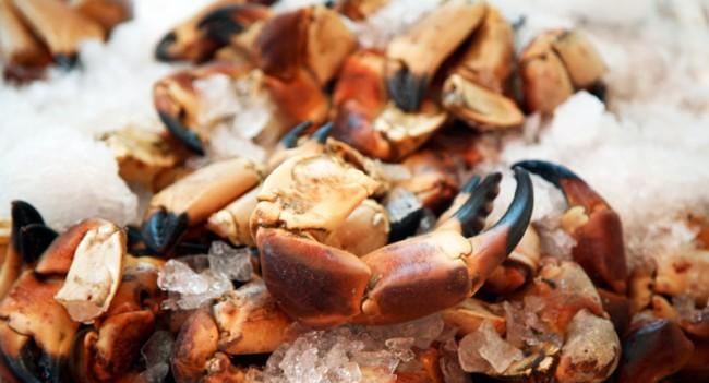 Crab Claws Summer Market Food