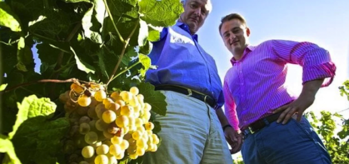 Meet the Outsiders from the Languedoc, the Pleasure will be all Yours