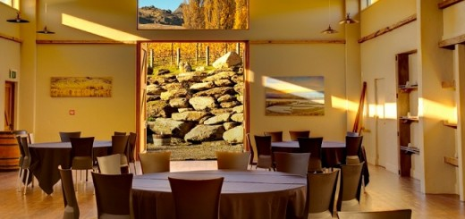 New Zealand Winegrowers extends Sommelier Scholarship to the UK & Ireland