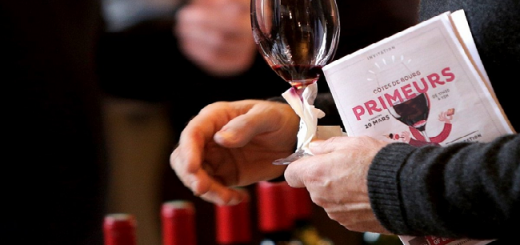 Bordeaux 2015 Primeurs Prices Went Up Over 20 Per Cent After Hailed As a Great Vintage