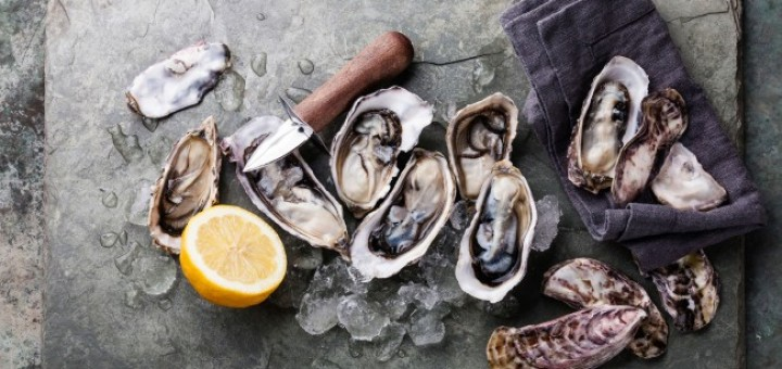 Oyster feature