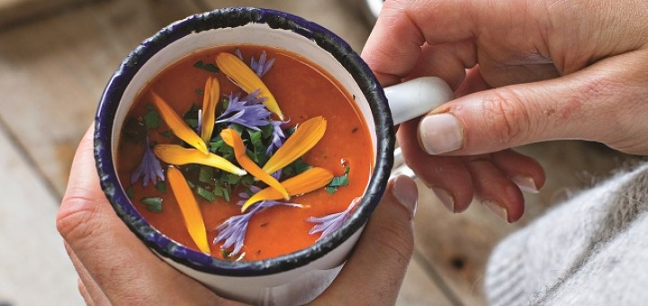 Roast Carrot and Red Pepper Soup Recipe from The Ketogenic Cookbook