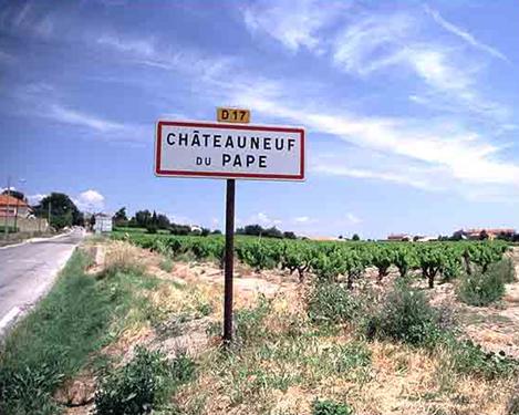 Wines of the Rhône Valley