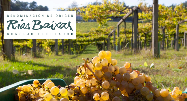 Five Rias Baixas Albariños to Try Now and Party Food Pairings to Match