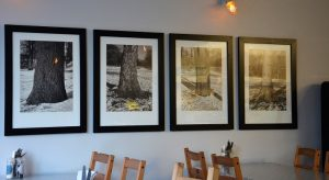 On Cloud 9 in Dublin 3 - Cloud Cafe Review