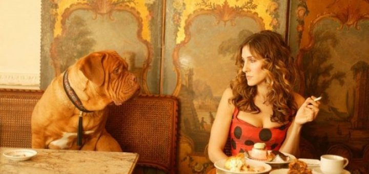 Solo Dining Carrie Bradshaw