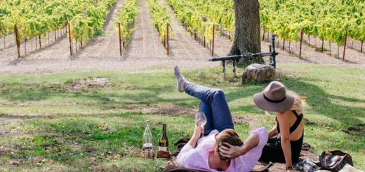 California Wine: Drink Outside the Box | California Wines in Ireland