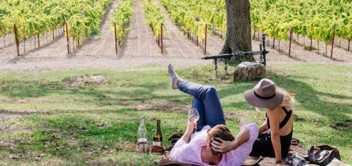 California Wine: Drink Outside the Box   California Wines in Ireland