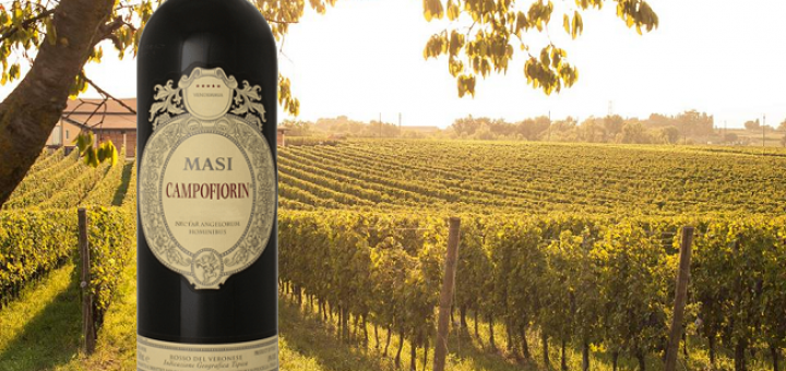 Masi Campofiorin 2013 - Wine of the Week from O'Briens 2