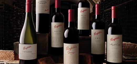 Penfolds Wines Tour