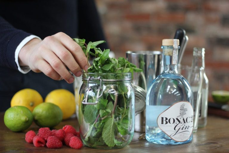 Classic or with a Summer Twist? G&T Recipe to Celebrate International Gin and Tonic Day