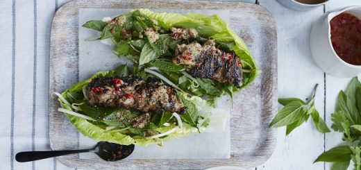 chicken wraps recipe skinny salads