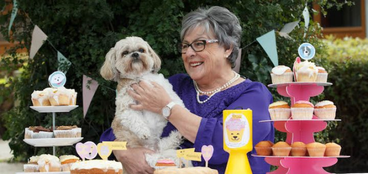 Pupcake Day Dogs Trust