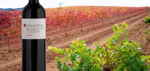 This Fruity Spanish Garnacha Is A Getaway Red for the White Wine Drinker