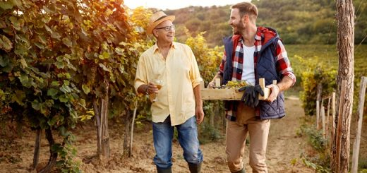 Wines Back from the Dead - Nearly Extinct Varieties Returned to Amaze You