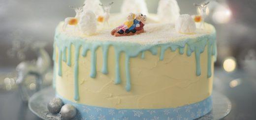 Siúcra and Catherine Fulvio Cranberry & Plum Naked Cake Recipe (1)