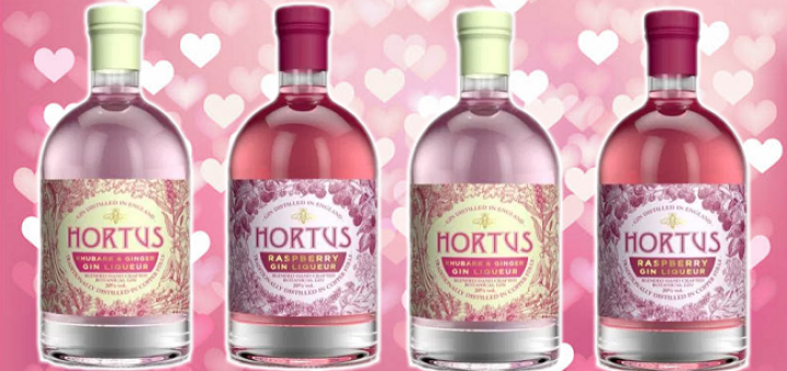 Lidl Launched Two Pink Gins in Time for Valentine's Day and They're Great Great Value | Pink Gin