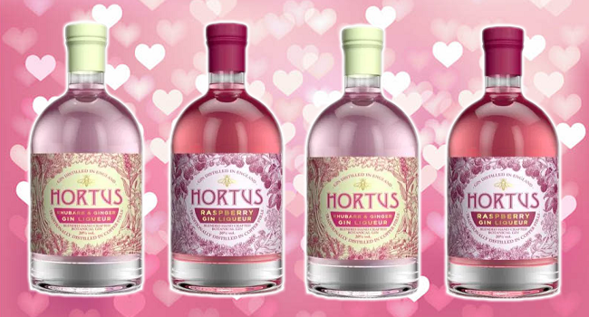 lidl launched two pink gins in time for valentine 39 s day. Black Bedroom Furniture Sets. Home Design Ideas