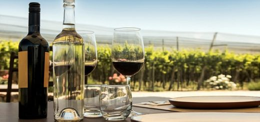 Best Chilean Wines - Explore Cool Regions Reinventing Wines from Chile