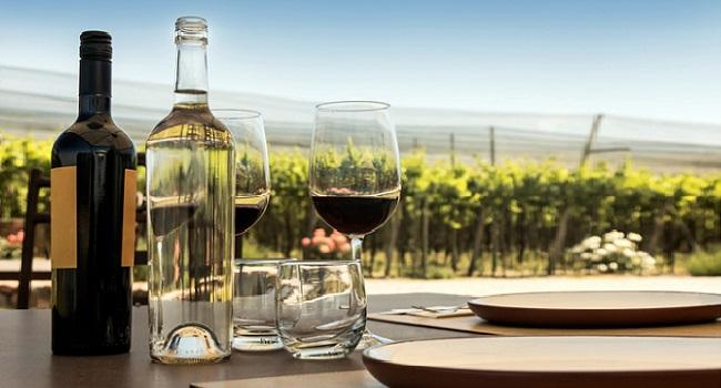 Best Chilean Wine Tours