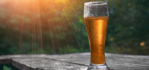 Beers Gone Wild